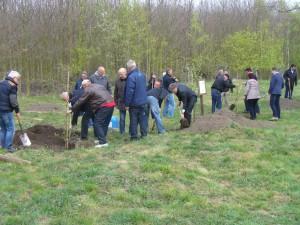 BaumpflanzungStadtwald